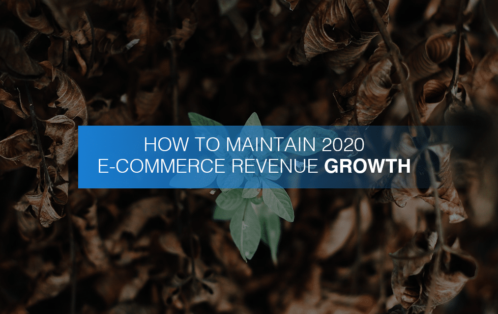 How To Maintain 2020 E-Commerce Revenue Growth